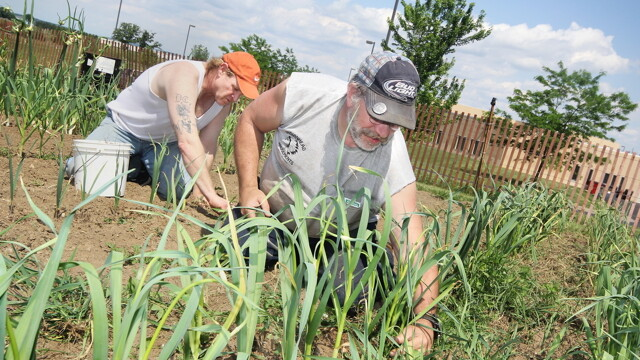 GROW YOUR OWN. The Dunn County Jail's inmate-tended garden was initially spearheaded in 2009 by a group within the Dunn County Jail's Literacy Program.