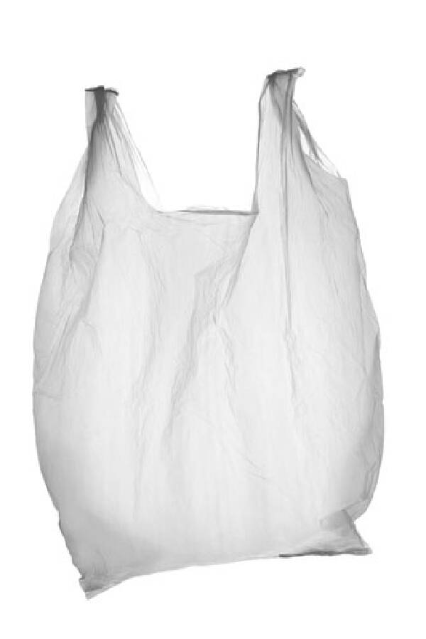 Committee Aims To Bag Plastic Bags Businesses