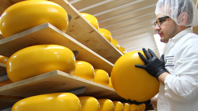 An employee rotates wheels of aging Gouda at Holland's Family Cheese in Thorp.