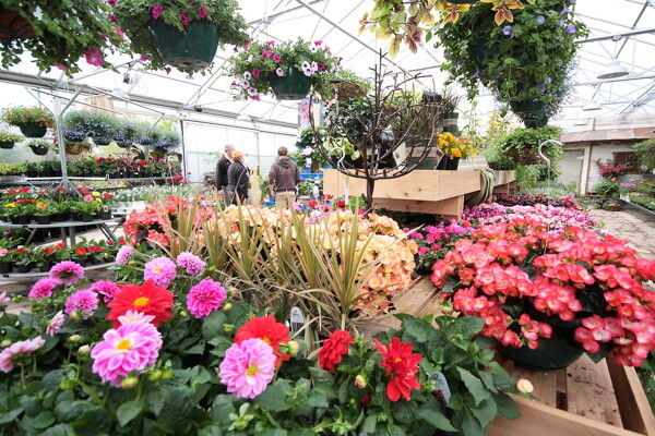 Superbe Like A Healthy Perennial, Down To Earth Garden Center Has Blossomed To Life  This Spring Bigger And Better. The Garden Center On Eau Claireu0027s South Side  Has ...