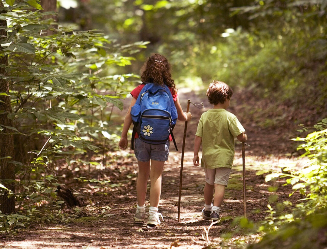 Keeping Kids Engaged On Outdoor Adventures A Q A With