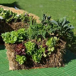 straw bale gardening class - Straw Bale Garden