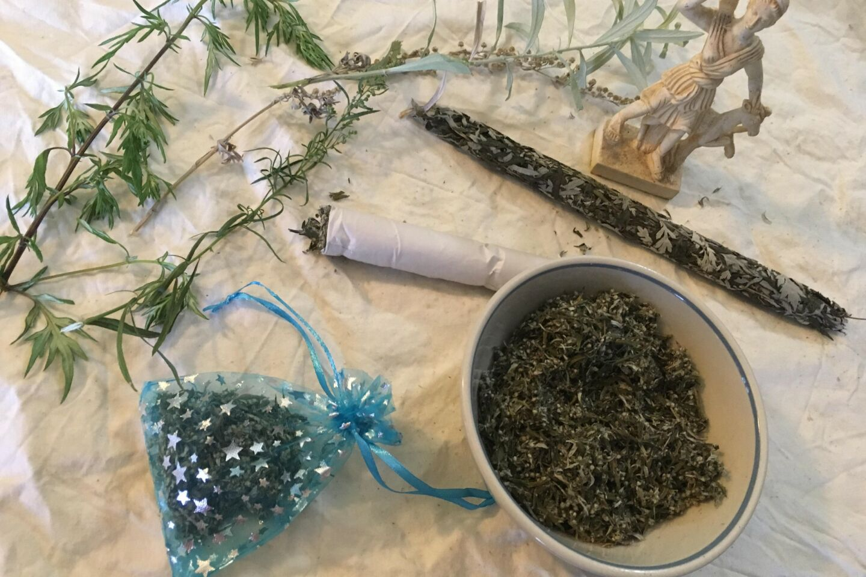 Mugwort Magic & Medicine: the Herbal Artemisias - The Broom &