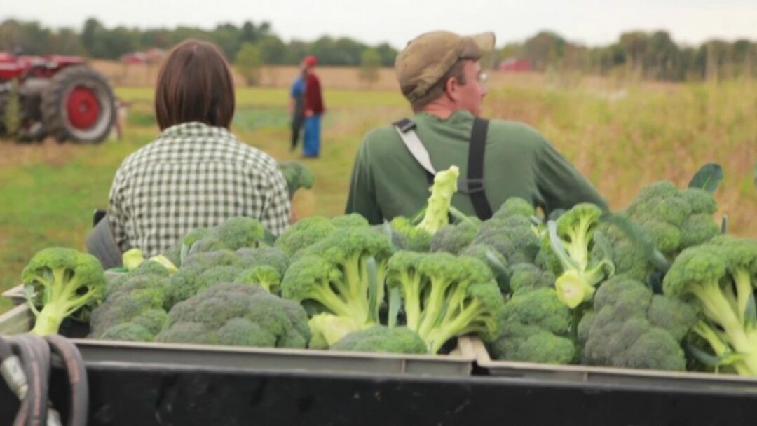 A still from an Around the Farm Table webisode.