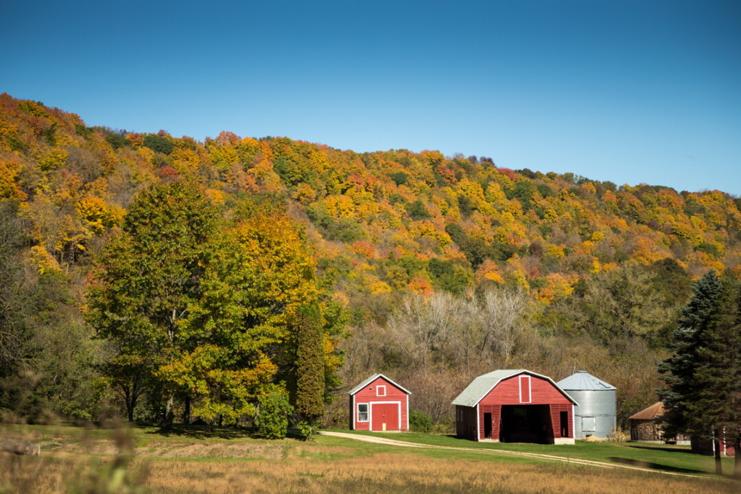 Wisconsin is the perfect place to get the kids in the car, hit the road, and revel in the changing leaves.